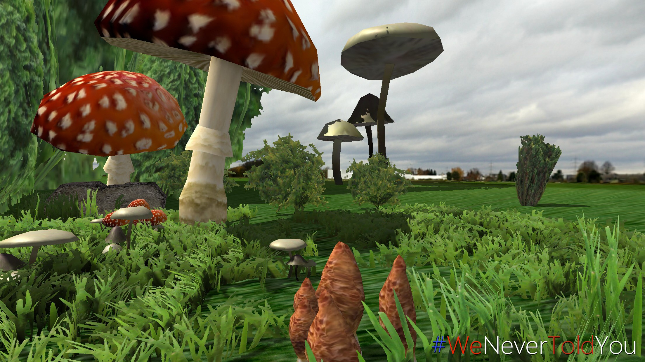 Augmented Reality Mushrooms